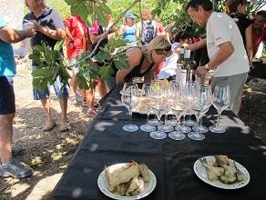 Una cata de excelentes vinos con unas tapas