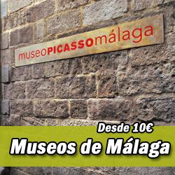 Entrada Museos de Málaga