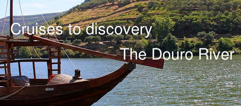 Cruises  in the douro river