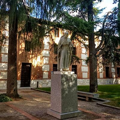 Estancia + Entrada y visita Colegio Mayor de San Ildefonso