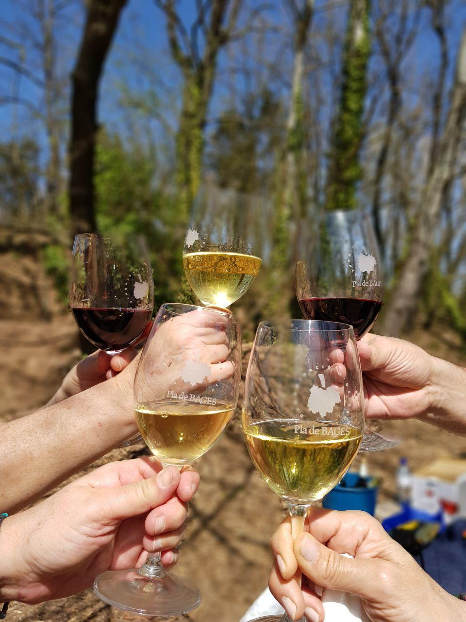 Els vins de la DO Pla de Bages