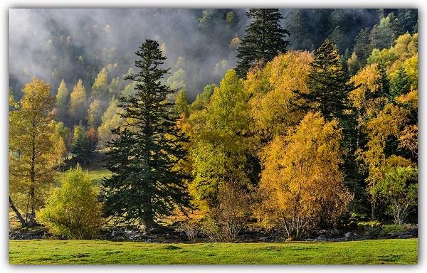 Parque Natural del Alt Pirineu