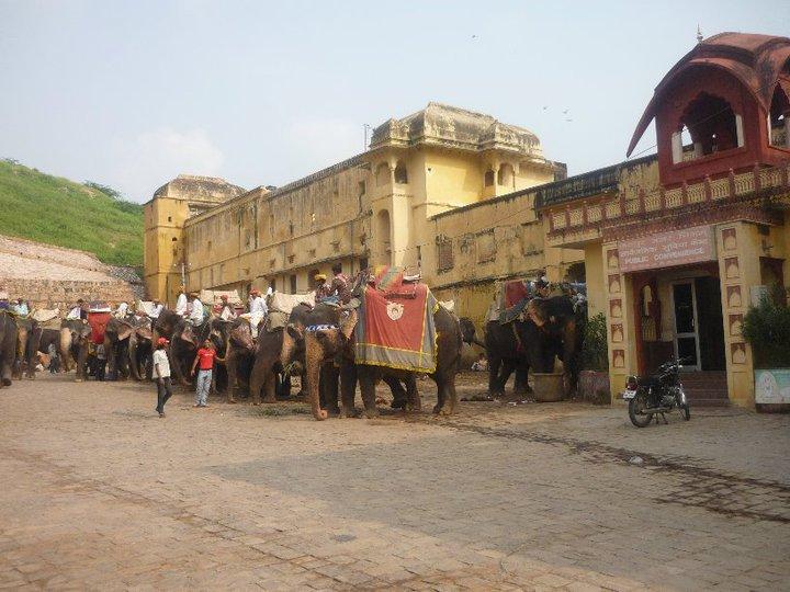 Nuestros Viajeros en La India