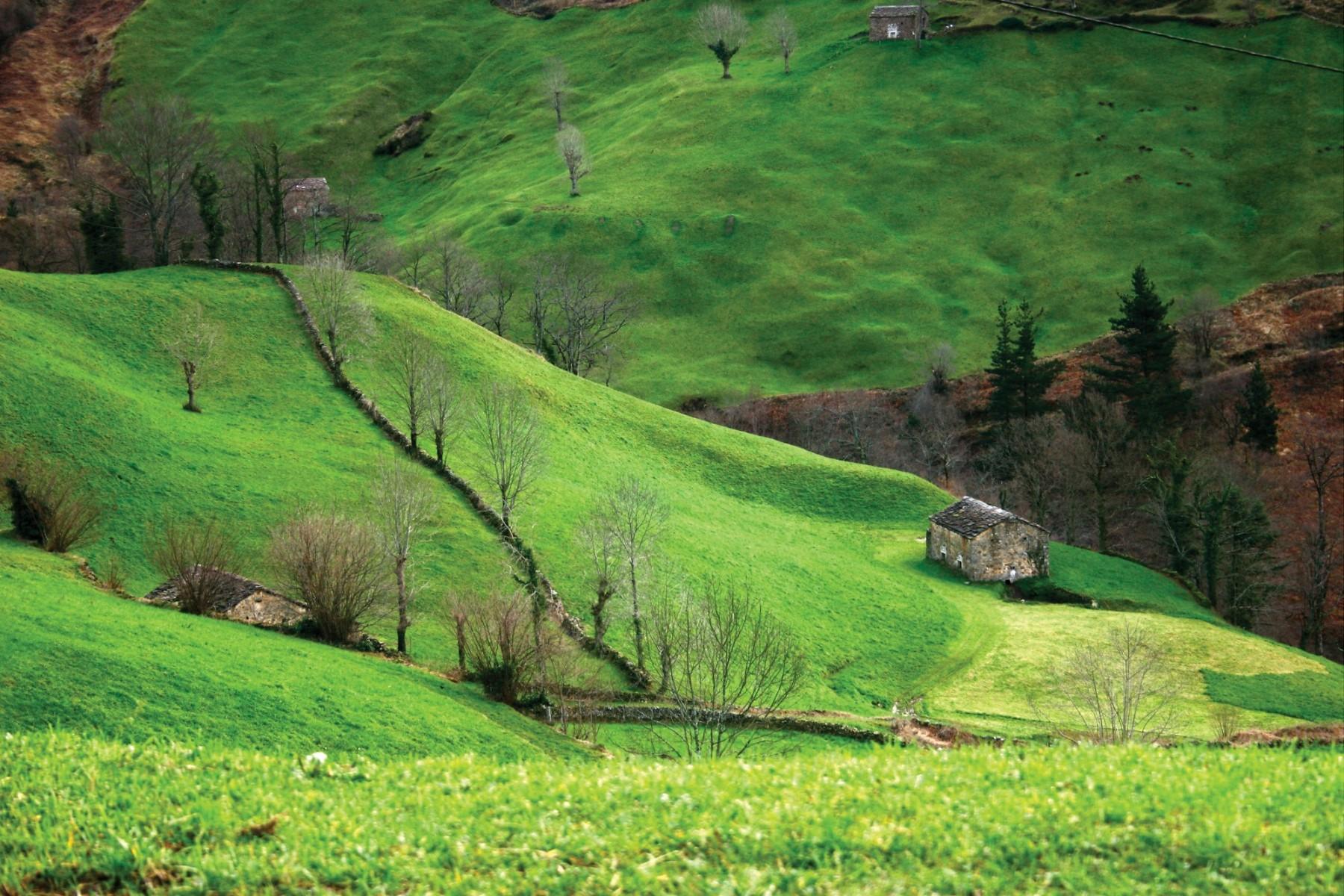 Vega de Pas. Cantabria