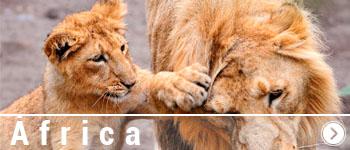 Viajes por Africa