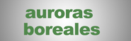 auroroasborelasnow