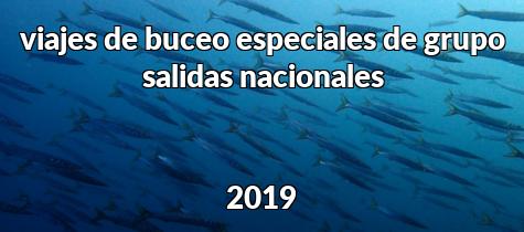 Salidas nacionales 2019