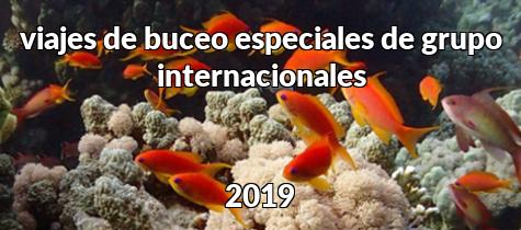Viajes internacionales 2019