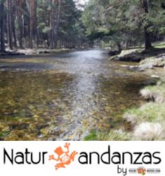 Viajes y salidas de naturaleza
