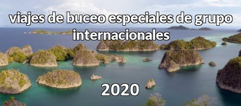 Viajes internacionales 2020