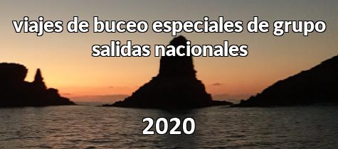 Salidas nacionales 2020