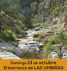 Barranco de las Umbr�as en G�dar