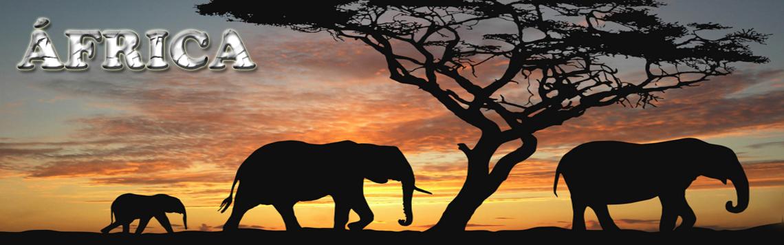 BANNER ROTATIVO AFRICA