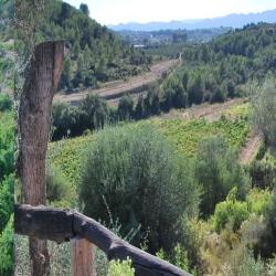 Escapada 2 noches Sant Mateu + Bodegues Besalduch Valls & Bellmunt